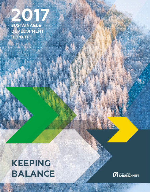 >Sustainable development report 2017