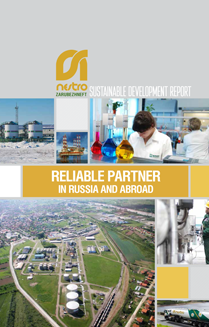 >Sustainable development report 2012